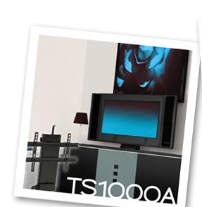 ts1000apicture